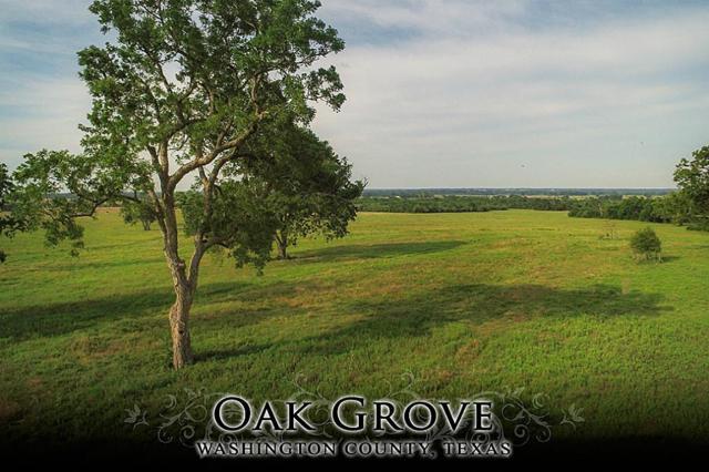 17 Flat Prairie Road, Washington, TX 77880 (MLS #26881382) :: JL Realty Team at Coldwell Banker, United