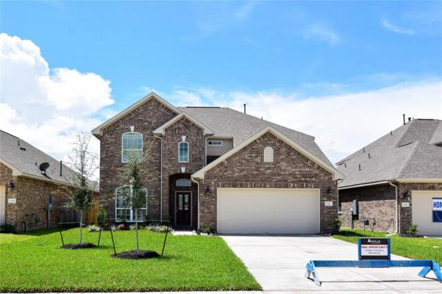 222 Rochester Trail Lane, Dickinson, TX 77539 (MLS #28175813) :: The Heyl Group at Keller Williams