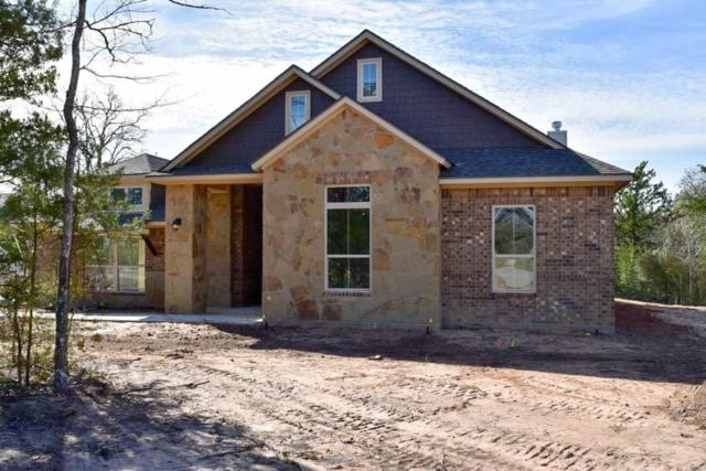 17284 Cedar Springs Court, College Station, TX 77845 (MLS #42718898) :: Christy Buck Team