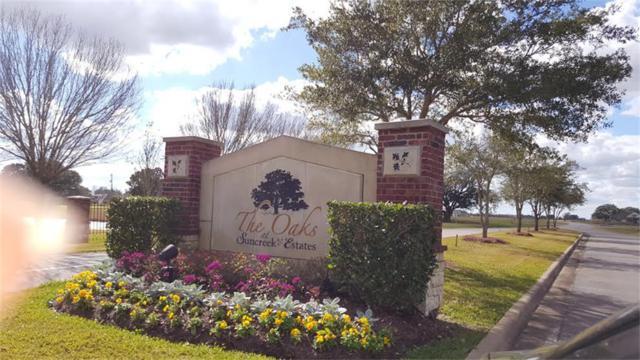 226 Mayad Boulevard, Rosharon, TX 77583 (MLS #54269924) :: Caskey Realty