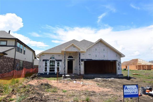 248 Rolling Creek Lane, Dickinson, TX 77539 (MLS #58389770) :: The Johnson Team