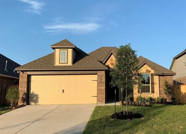 1533 Ancient Oak Lane, Conroe, TX 77301 (MLS #61604133) :: The Home Branch