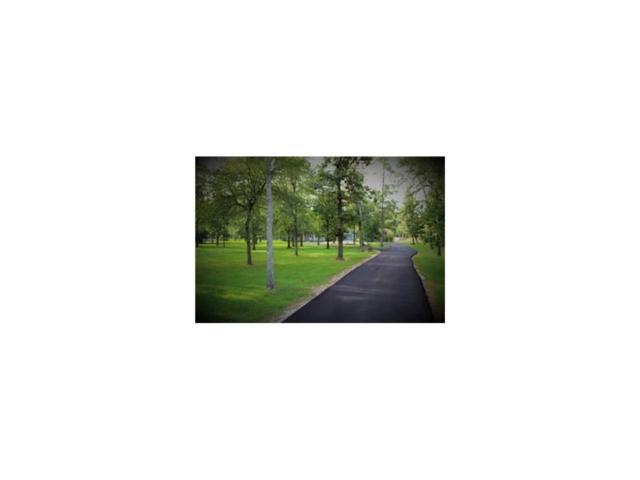 9210 W Diamante Drive, Magnolia, TX 77354 (MLS #94870624) :: Giorgi Real Estate Group