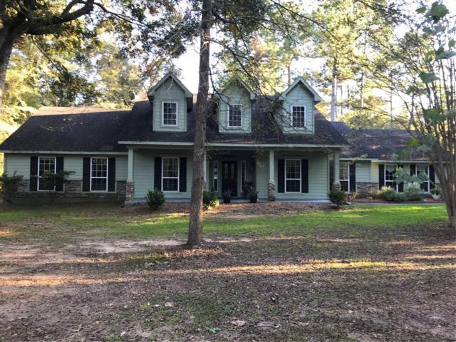 16919 Mustang Trail Drive, Magnolia, TX 77355 (MLS #50631509) :: Texas Home Shop Realty