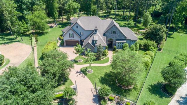 14 Bridle Oak Court, The Woodlands, TX 77380 (MLS #86018450) :: JL Realty Team at Coldwell Banker, United