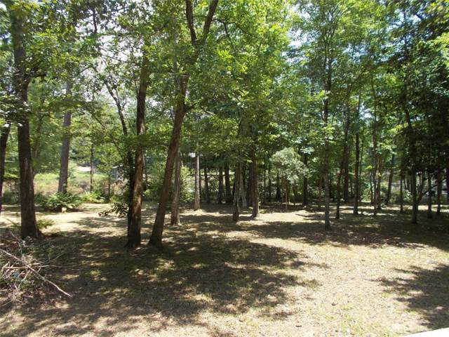 1206 County Road 3180, Colmesneil, TX 75938 (MLS #12711356) :: The SOLD by George Team