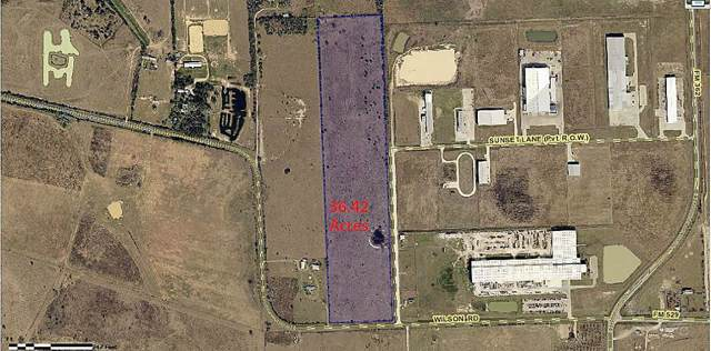 34436 Wilson Road, Brookshire, TX 77423 (MLS #16898454) :: Green Residential