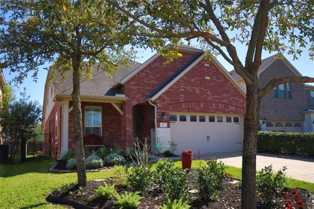 27 Tealight Place, The Woodlands, TX 77375 (MLS #41106277) :: The SOLD by George Team