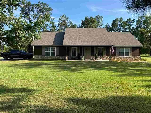 3395 County Road 480 Road, Kirbyville, TX 75956 (MLS #10017504) :: Parodi Group Real Estate