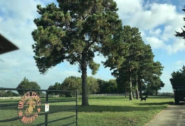 5548 Highway 36, Sealy, TX 77474 (MLS #10131127) :: Ellison Real Estate Team