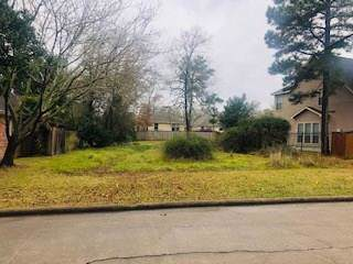 11710 Marina View Drive, Montgomery, TX 77356 (MLS #10155846) :: Ellison Real Estate Team