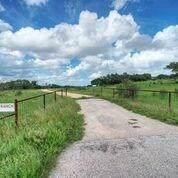 7199 Robinson Road, Blanco, TX 78636 (MLS #10187944) :: NewHomePrograms.com LLC