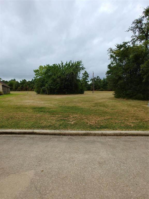 168 Wick Willow, Montgomery, TX 77356 (MLS #10193453) :: Ellison Real Estate Team