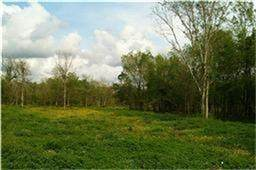 0 Hagerson, Sugar Land, TX 77479 (MLS #10333808) :: NewHomePrograms.com