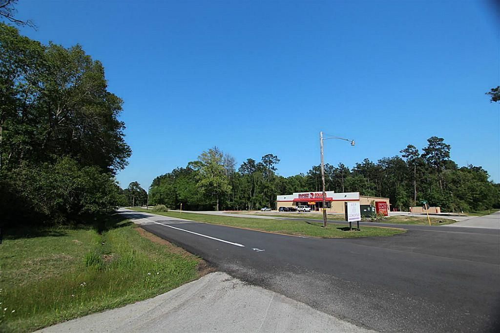 Res H-2 Roman Forest Boulevard - Photo 1
