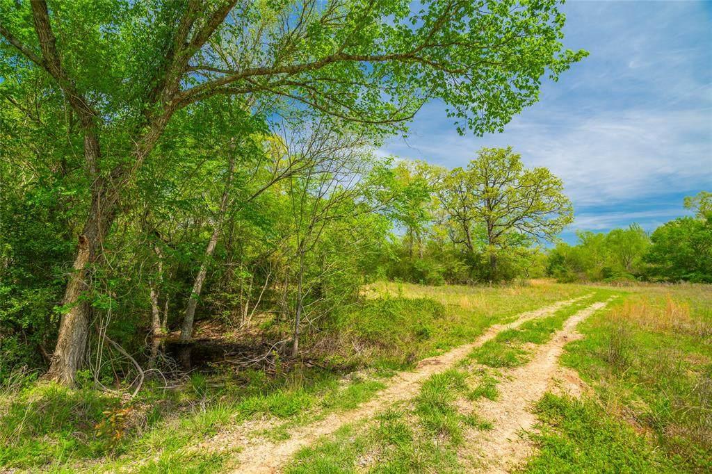 TBD High Prairie Road - Photo 1