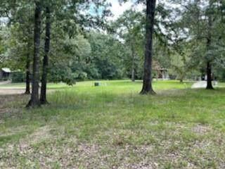 721 Windwood Drive, Livingston, TX 77351 (MLS #10885656) :: Caskey Realty