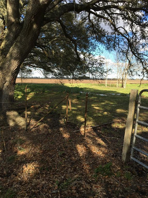 10227 Boone Road, Needville, TX 77461 (MLS #10954708) :: Texas Home Shop Realty