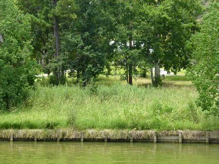 90 Twinstone Circle, Coldspring, TX 77331 (MLS #10971434) :: My BCS Home Real Estate Group