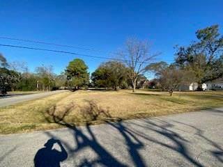 512 Kane Street, Tomball, TX 77375 (MLS #10988743) :: Giorgi Real Estate Group