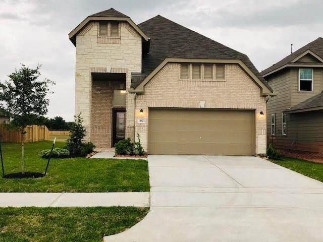 13823 Evansdale Lane, Houston, TX 77083 (MLS #11028165) :: Bray Real Estate Group
