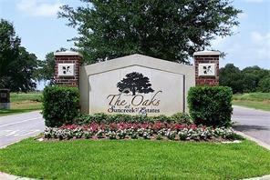1502 Lakeland Circle, Rosharon, TX 77583 (MLS #11534599) :: NewHomePrograms.com LLC