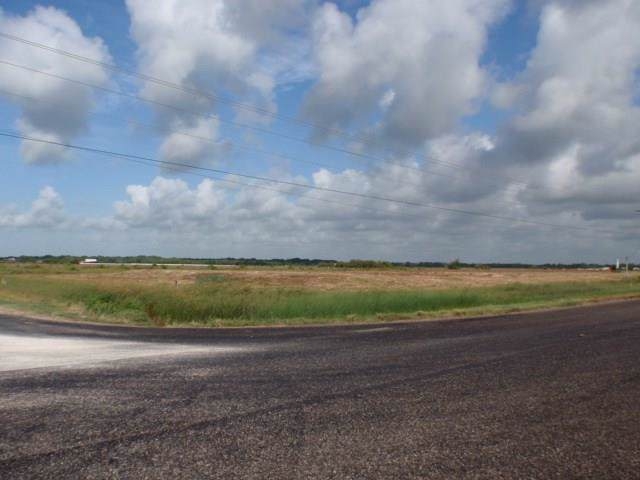 5603 County Road 286, Sargent, TX 77414 (MLS #12081883) :: The Queen Team