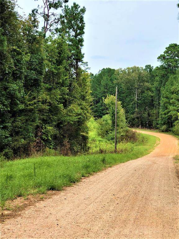 341 Andrew Jackson Drive, Livingston, TX 77351 (MLS #12235546) :: The SOLD by George Team