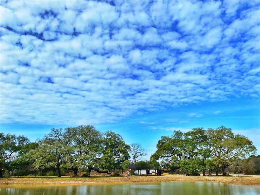 21818 White Oak View Drive - Photo 1