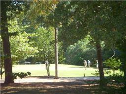123 Wycliffe Drive, Montgomery, TX 77356 (MLS #13085925) :: Fairwater Westmont Real Estate
