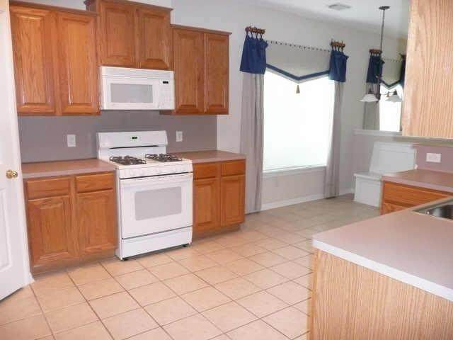 1203 Autumn Green Drive, Missouri City, TX 77459 (MLS #13095663) :: Caskey Realty
