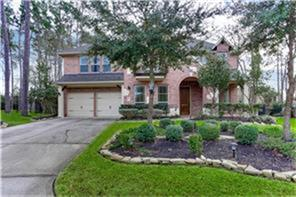 2 Blue Wildflower Place, The Woodlands, TX 77354 (MLS #13236404) :: Krueger Real Estate