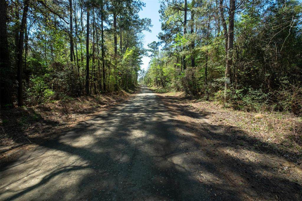 tbd County Road 3650 - Photo 1