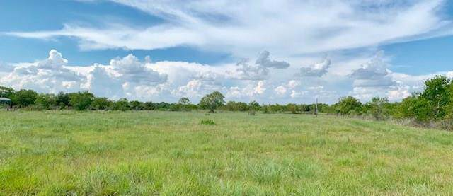 24120 Fm 2004, Angleton, TX 77515 (MLS #14327924) :: The SOLD by George Team