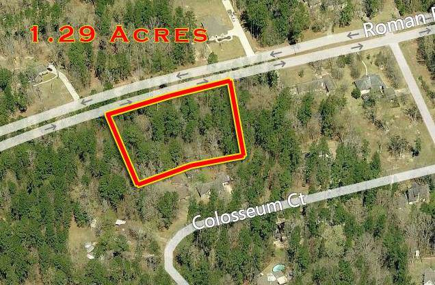 Lts 4,5 Roman Forest Boulevard, Roman Forest, TX 77357 (MLS #14381490) :: Connect Realty