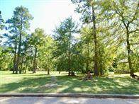 70 Highland Point Drive, Montgomery, TX 77356 (MLS #14516865) :: All Cities USA Realty