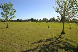 6 Acres County Road 4865, Dayton, TX 77535 (MLS #14822606) :: The SOLD by George Team