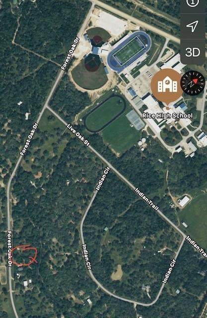 0 Forest Oaks Drive, Altair, TX 77412 (MLS #15029848) :: The Queen Team