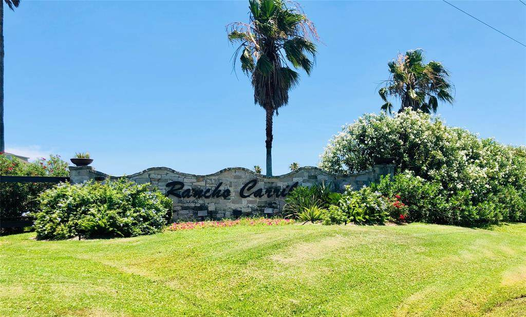 804 Rancho Carribe Drive - Photo 1