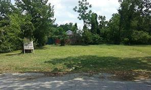 2419 Anita Street, Houston, TX 77004 (MLS #15730520) :: Texas Home Shop Realty