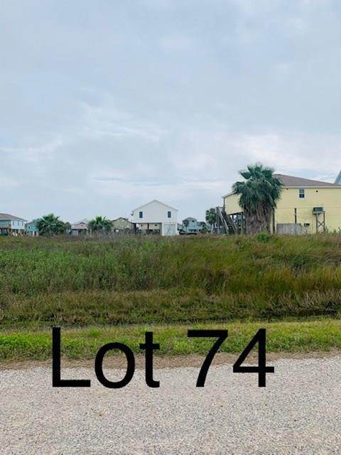 TBD74 Whooping Crane Street - Photo 1