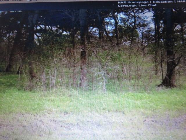0 County Road 165, Boling, TX 77420 (MLS #16149191) :: Caskey Realty