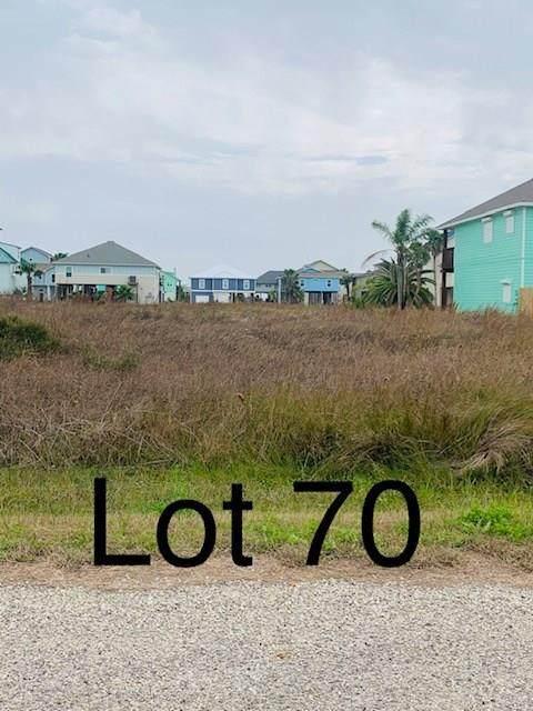 TBD70 Whooping Crane Street, Port O Connor, TX 77982 (MLS #16779830) :: The Parodi Team at Realty Associates
