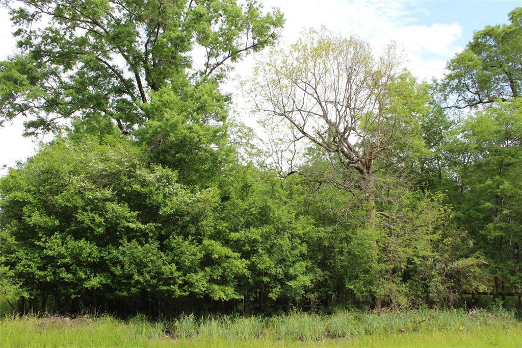 Lot 376 Sour Lake Circle - Photo 1