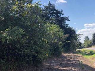 Tract B 12767 Fm 1371, Chappell Hill, TX 77426 (MLS #17264846) :: Connect Realty