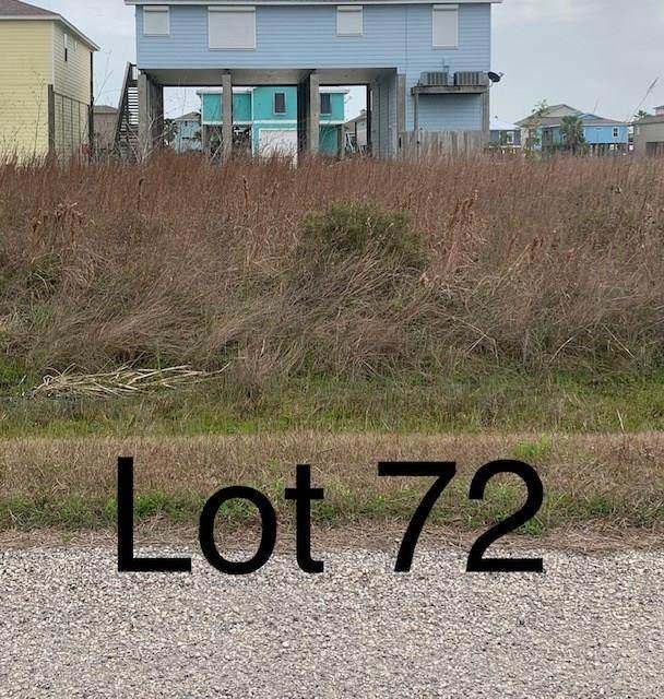 TBD72 Whooping Crane Street, Port O Connor, TX 77982 (MLS #17502760) :: The Parodi Team at Realty Associates