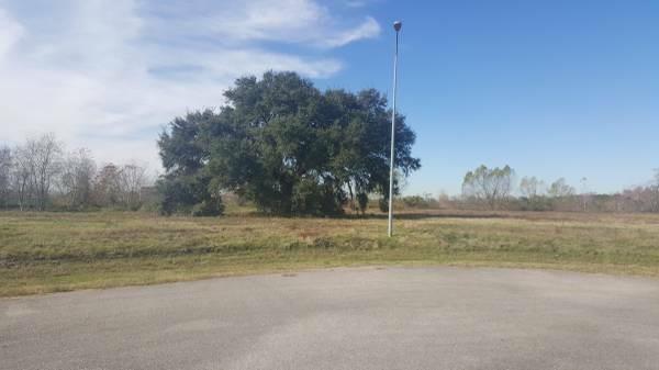 538 Lakeland Circle, Rosharon, TX 77583 (MLS #17511201) :: Giorgi Real Estate Group