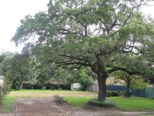 5730 N Braeswood Boulevard, Houston, TX 77096 (MLS #17975541) :: Guevara Backman