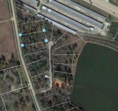 Lot 26 Pine Lake, Conroe, TX 77316 (MLS #18446031) :: The Andrea Curran Team powered by Compass