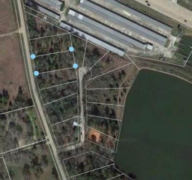 Lot 26 Pine Lake, Conroe, TX 77316 (MLS #18446031) :: Green Residential